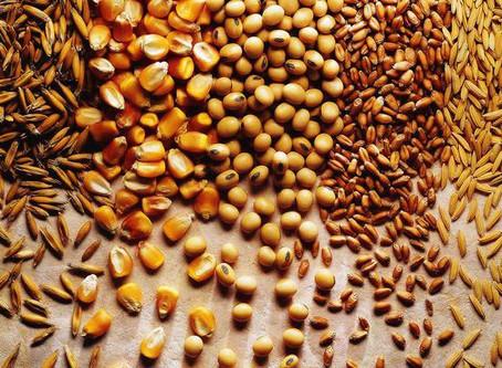 Último levantamento consolida safra recorde de grãos em 257,8 milhões de toneladas