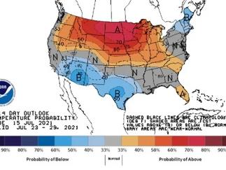 Clima desfavorável no Meio-Oeste dos EUA puxa preços de soja e trigo em Chicago