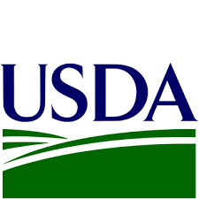 Safra 2021/22: USDA mantém números da soja e corrige os de milho para cima nos EUA