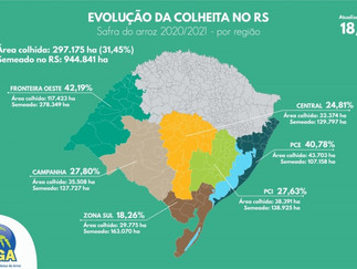 Área colhida no Estado é de 31%