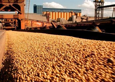 Brasil já importou quase 500 mil toneladas de soja em 2020