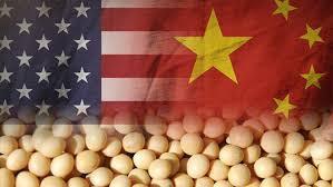 Soja americana acima de US$ 12,50/bushel CBOT+basis,desestimula esmagamento e tira China das compras