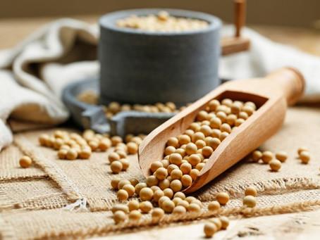 USDA informa vendas semanais de soja da safra nova dos EUA acima de 3 mi de t