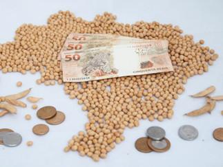 Chicago sobe, mas queda do dólar limita alta no preço da soja no Brasil
