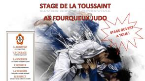 Stage de judo à Fourqueux St Germain-en-Laye