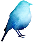 Bird%2520Silhouette%25202_edited_edited.