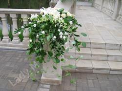 цветы мытищи