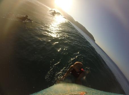 Surf treino com Chico