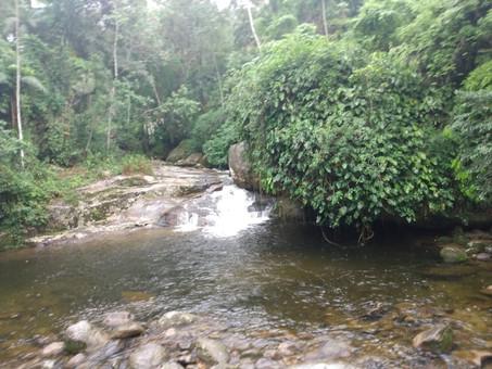 Jipe Tour pelas Cachoeiras e Alambiques da Serra da Bocaina