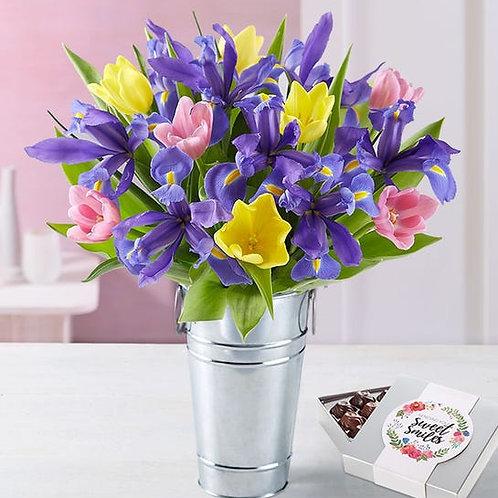 Iris & Tulip Springtime Fun