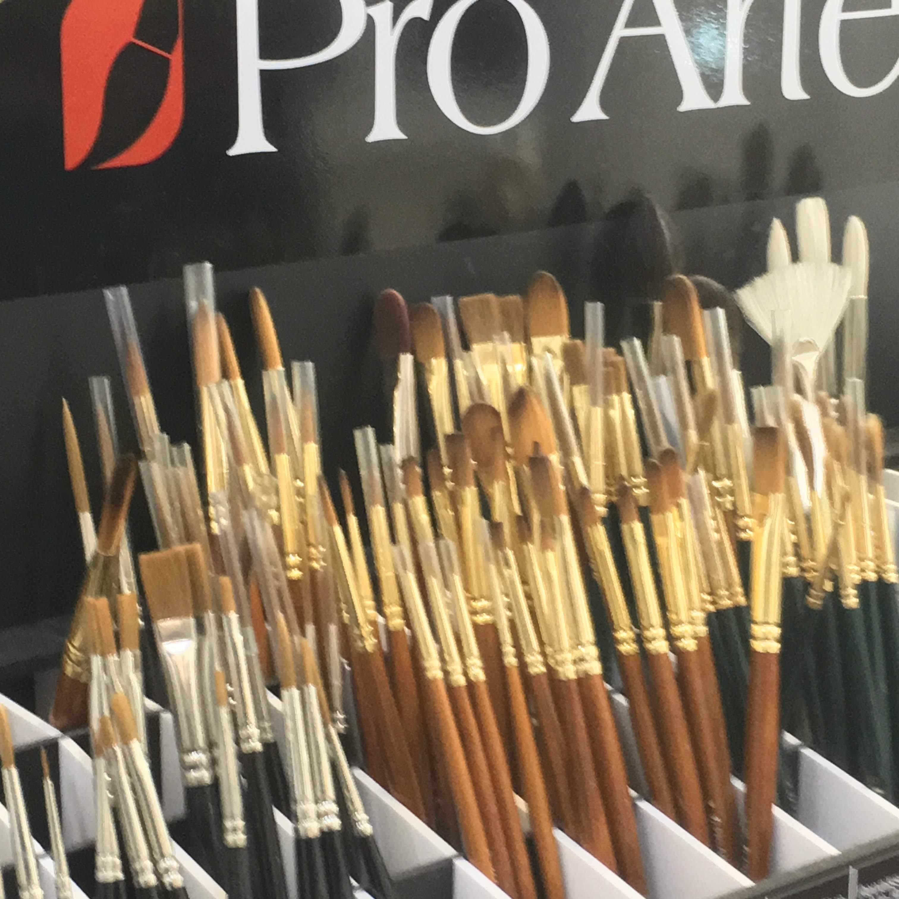 pro-arte brushes