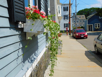 sidewalk with flowers flowing out of box
