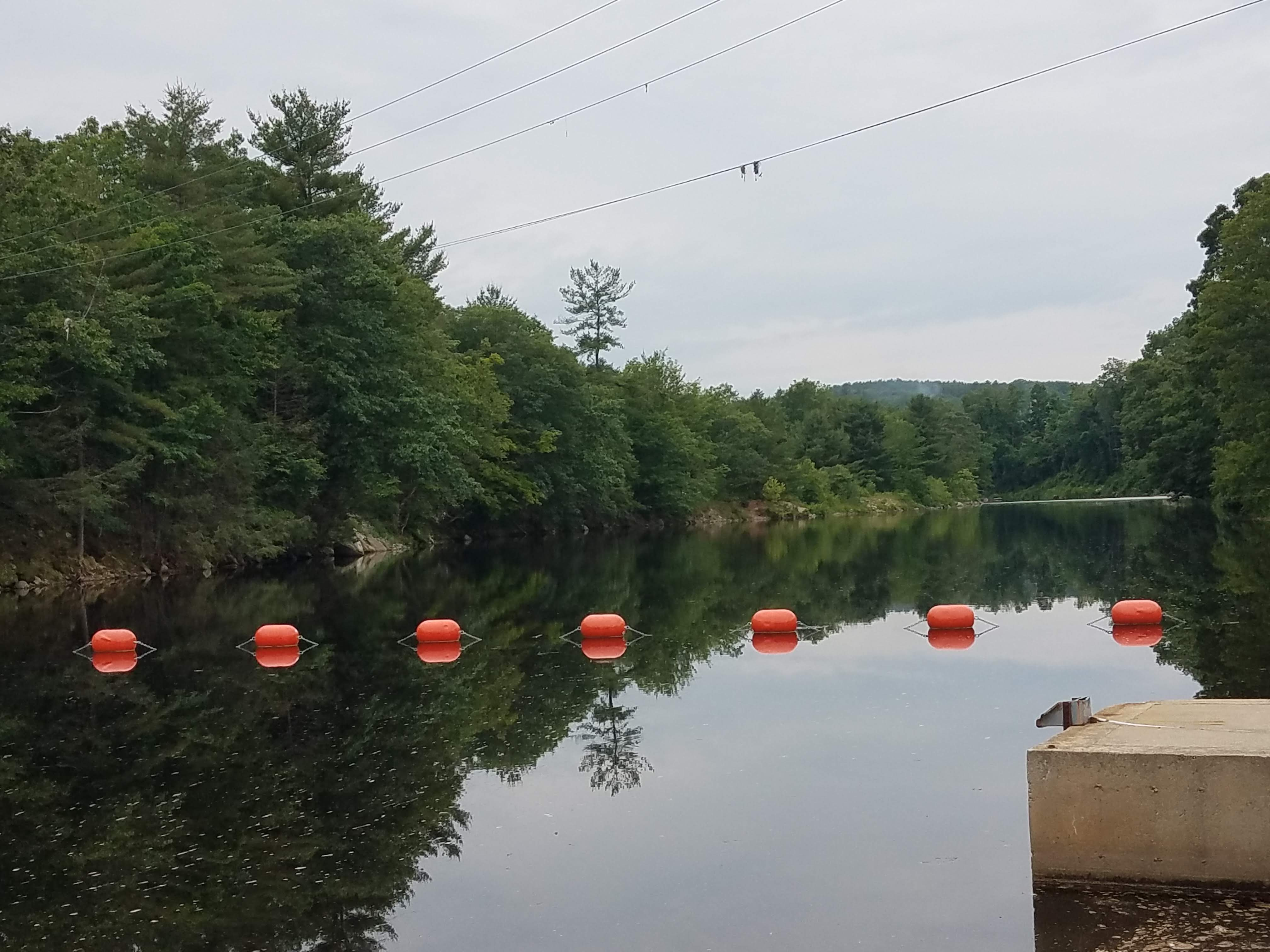Dam Buoys