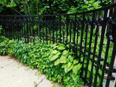 scroll garden fence