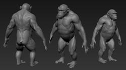 chimp_wip_09