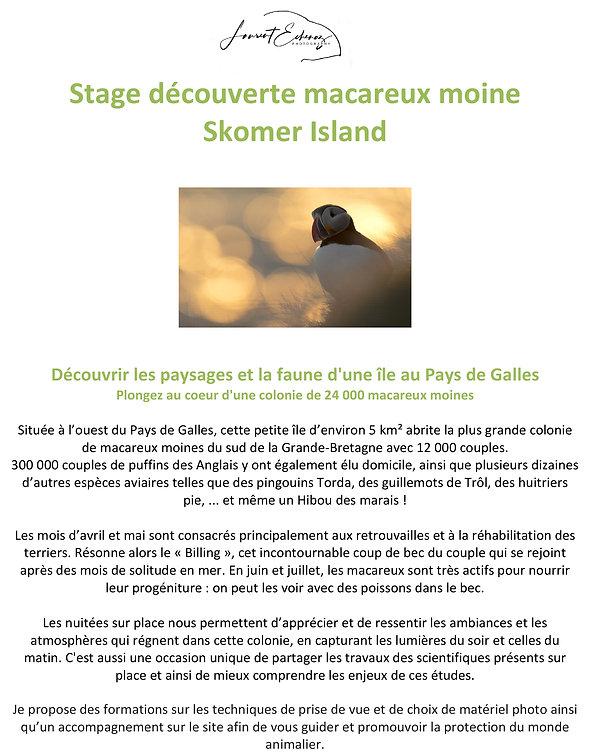 Skomer island - Stage découverte macareux moine - Pays de Galles-1.jpg