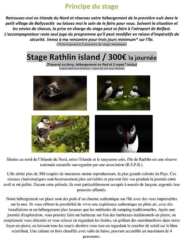 Rathlin island - Stage en immersion macareux moine  - IRLA…-3.jpg