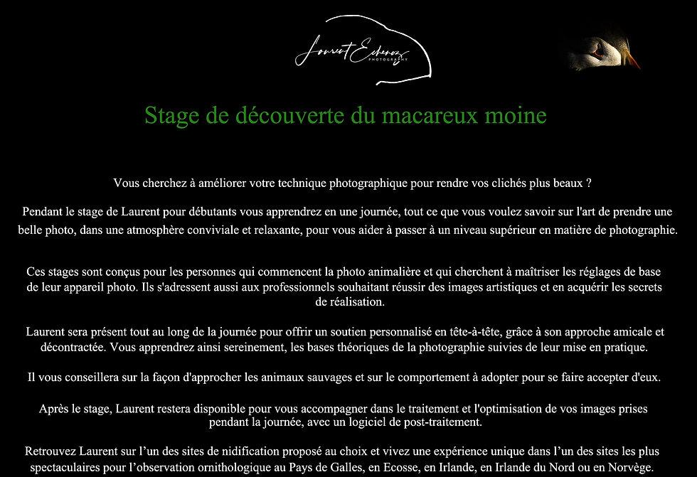 1-Déroulement stage site Web-1.jpg