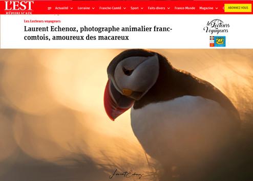 Laurent Echenoz - Photographe animalier franc-comtois, amoureux des macareux