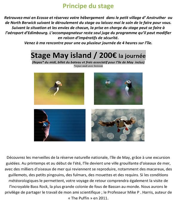 L'île de May Au contact des macareux moines - ECOSSE-3.jpg