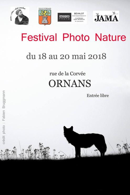 Festival Photo Nature d'ornans (25)