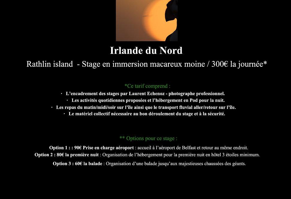 7-Déroulement stage site Web-6.jpg