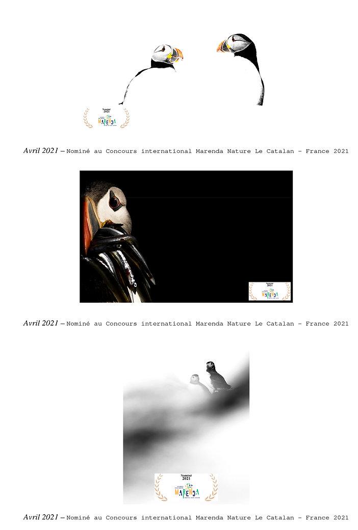 Références - site wix-4.jpg