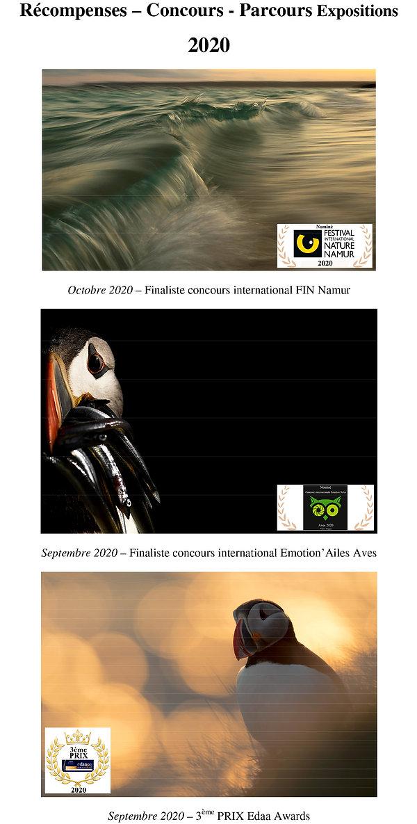 Références - site wix-1.jpg