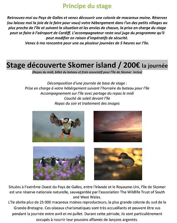 Skomer island - Stage découverte macareux moine - Pays de Galles-3.jpg
