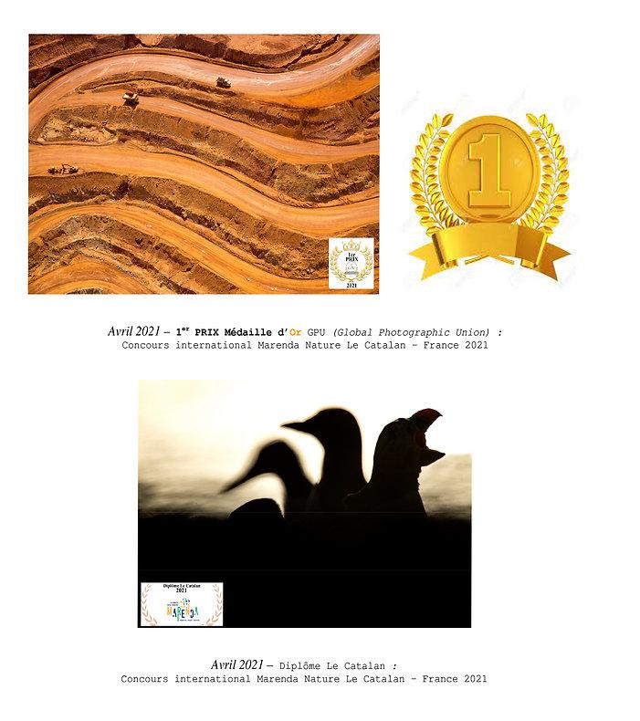 Références - site wix-2.jpg