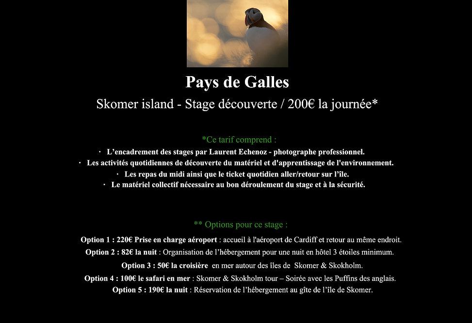 5-Déroulement stage site Web-4.jpg