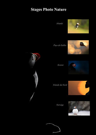 Stages Photo Nature LEP.jpg