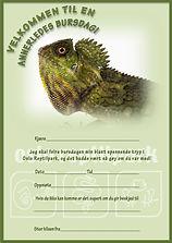 Bursdagsinvitasjon Reptilparken Fjelldrage