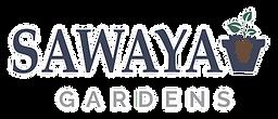 Sawaya-colour-01.png