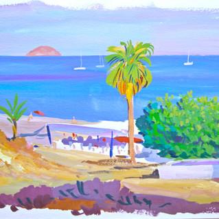 Costa Blanca y palmera