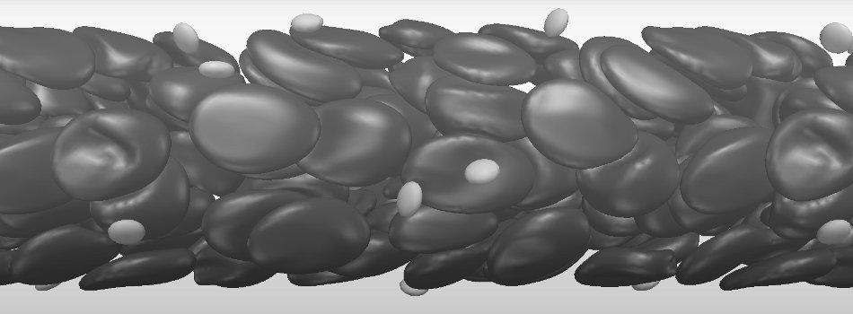 rbc+platelets_gray