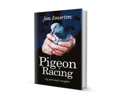 Pigeon Racing 3D