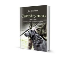 Countryman 3D
