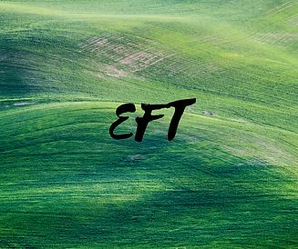 EFT.png