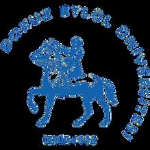 DEU-Logo-PNG-2000x2000.png