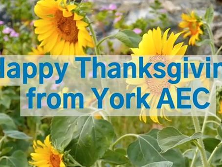York AEC brings the Thanksgiving Spirit