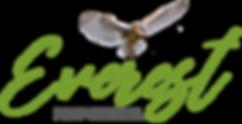 Logo 6_edited_edited_edited.png