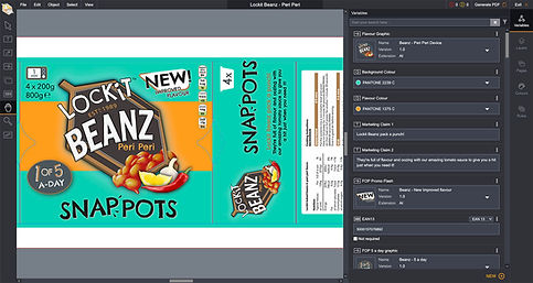 MYPACKBRAIN-packaging-artwork-online-editor-screen.jpg