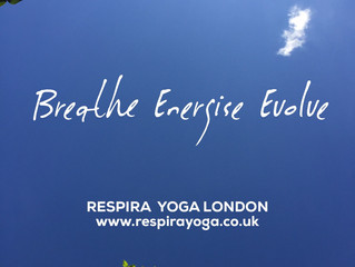 YOGA IN THE PARK FOR CHARITY!