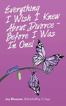 everything-i-wish-i-knew-about-divorce-b
