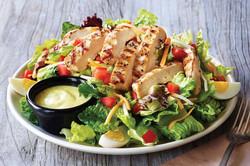 Grilled Chicken & Salad