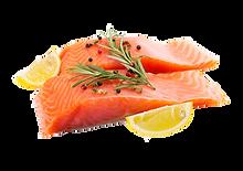gmo-salmon_2.png