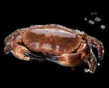 brown crab.png