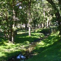 Spokane Creek.JPG