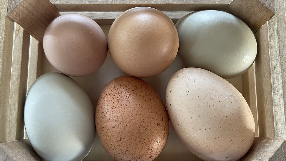 Farm Fresh Organic Eggs: 1/2 Dozen